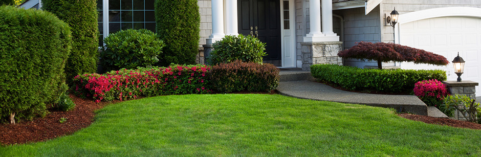 The Best Season For Landscaping The Masters Lawn Care