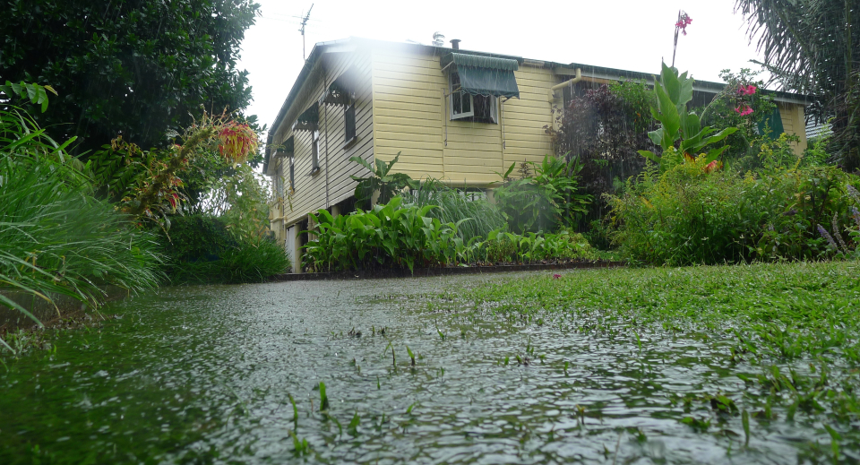 Quick tip is poor drainage causing problems in your lawn for Yard flooding problems