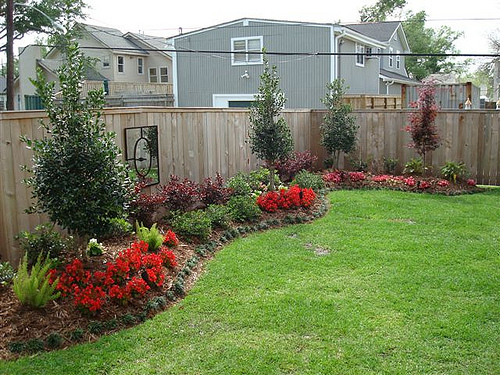 Gainesville Backyard Landscaping