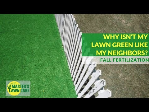 Embedded thumbnail for Why isn't my Gainesville lawn as green as my neighbors?