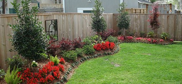 Gainesville backyard landscaping the masters lawn care for Easy to care for garden designs