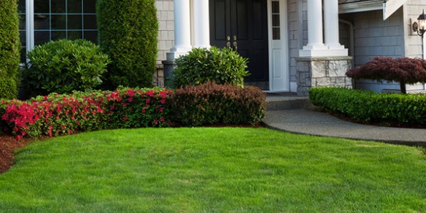 3 Gainesville Lawn Tips To Keep A Defined Bed Edge The