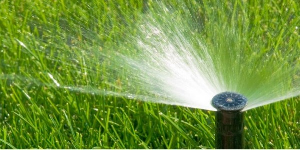 how often should i run my sprinkler system this summer the masters lawn care. Black Bedroom Furniture Sets. Home Design Ideas